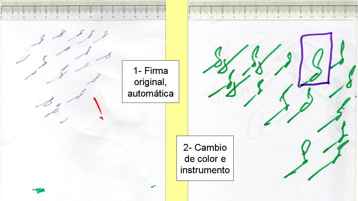 1-Firma original y e color con fibra
